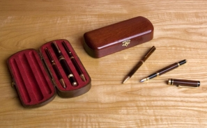 Pen and Case